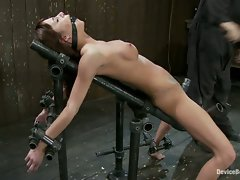Trapped naked brunette, has her huge nipples tortured and is bound...