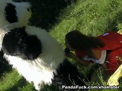 lassie stroking enormous dick in the woods toy bear